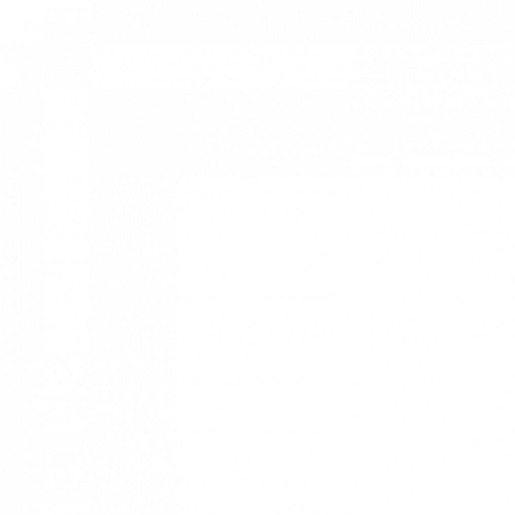 JAcobus 9 houtkachel